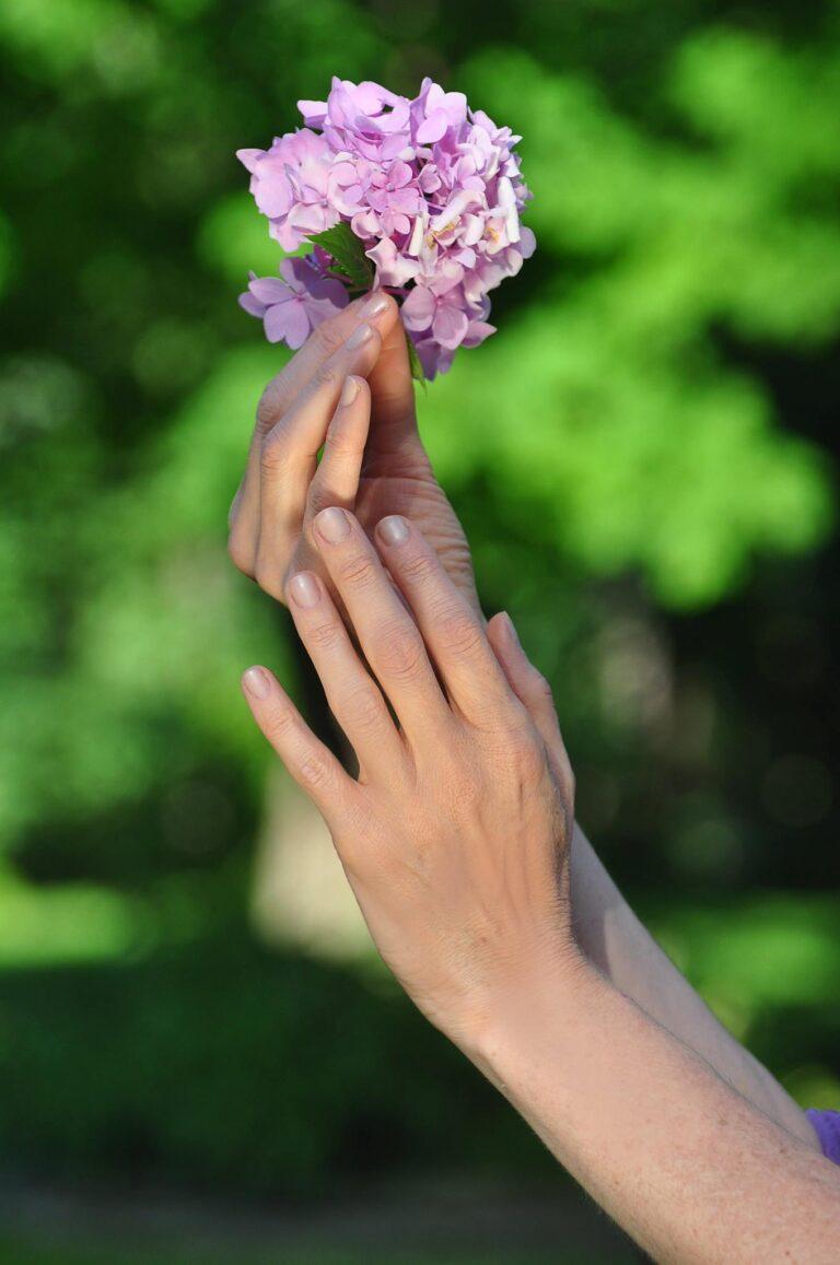 Amy Freinberg Hands